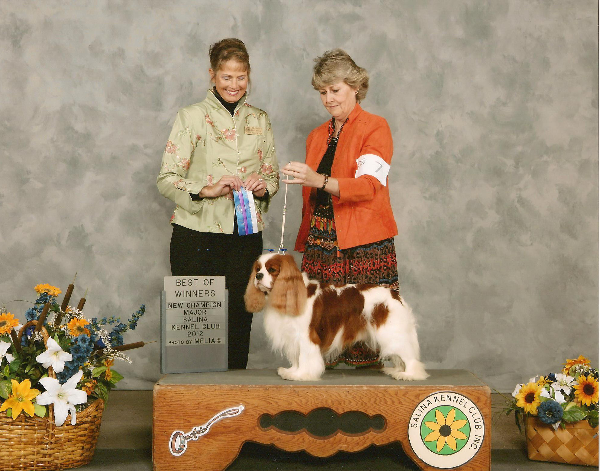 Dallas AKC Champion winning
